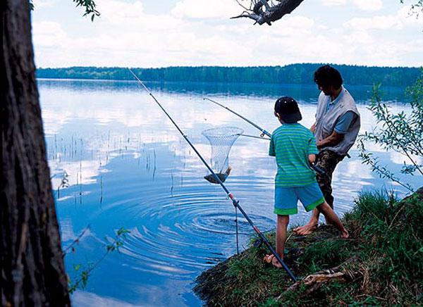 как ловить рыбу на воре